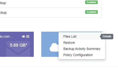 Restore Microsoft OneDrive files using BluVault for Office365 - File List4-01