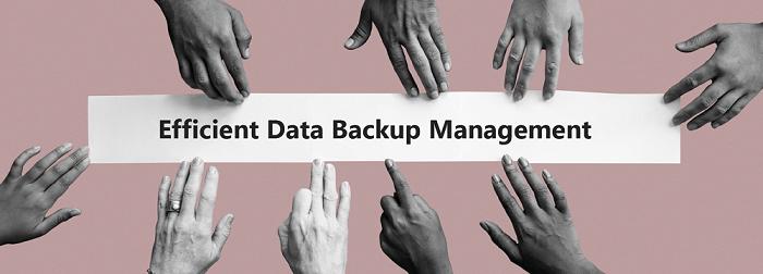 Banner - Delegated Administration for efficient data backup management