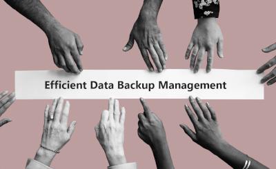 Delegated Administration for efficient data backup management